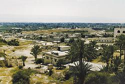 Jericho die grüne oase inmitten der wüste